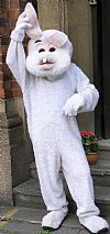 animal, rabbit, costume, hire,