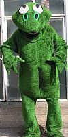 animal, frog, costume, hire,