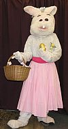 animal, rabbit, costume, period, easter, hire,